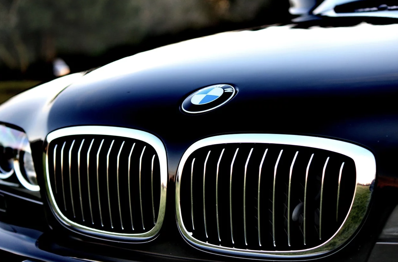 How Has BMW Earned a Cult Following?